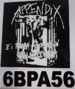 APPENDIX - IT RUIN BACK PATCH