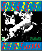 GORILLA BISCUITS - START TODAY POSTER