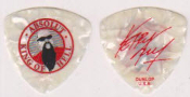 SLAYER - ABSOLUT KING OF HELL GUITAR PICKS