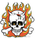 KOZIK STICKER - FLAMING SKULL STICKER