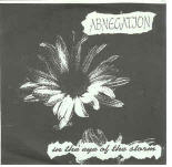 ABNEGATION - IN THE EYE OF THE STORM