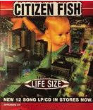CITIZEN FISH - LIFE SIZE POSTER
